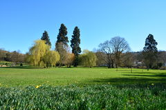 A landscape view of parkland. Royalty Free Stock Image