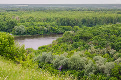 Landscape view on a river and forest Royalty Free Stock Photography