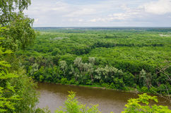 Landscape view on a river and forest Royalty Free Stock Photo