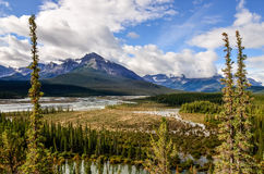 Landscape view of river and montains, Rocky Mountains, Canada Stock Photos