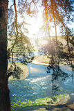 Landscape view of the river overflow Royalty Free Stock Photography