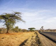 Landscape view of the road side. Landscapes view road side travel trip blue sky nature clouds africa tarmac country lonelt lonely path tree grass savannah royalty free stock photo