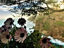 Landscape, sea and flowers in Tossa de Mar, Spain stock images