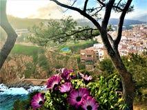 Landscape, sea, trees and flowers in Tossa de Mar, Spain stock photo