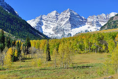 Landscape view of the snow covered mountains with colorful yellow aspen during foliage season Stock Photos