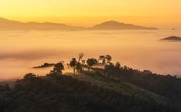 Landscape view of sunrise on high angle view with white fog in early morning over rainforest mountain Stock Images