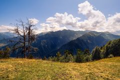 Landscape view of Svaneti mountains and dry tree, Caucasus, Georgia Royalty Free Stock Photography