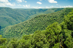 Landscape view of a thickly wooded valley, and mountains Stock Images