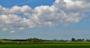 Landscape view towards The Hague, Netherlands Stock Images