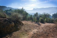 Sunny Mallorca landscape Soller. Landscape view in the Tramuntana mountains near Soller, Mallorca, Spain Royalty Free Stock Photo