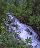 Raging Waterfall royalty free stock photo