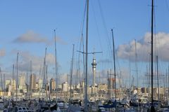 Landscape view of Westhaven Marina Auckland New Zealand. Landscape view of Westhaven Marina and Auckland skyline in Auckland, New Zealand Stock Photo