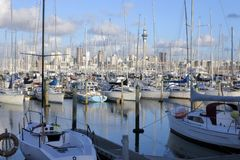 Landscape view of Westhaven Marina Auckland New Zealand. Landscape view of Westhaven Marina and Auckland skyline in Auckland, New Zealand Royalty Free Stock Photos