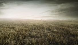 Landscape view of wild dry grass bounded by a wooden fence royalty free stock photos