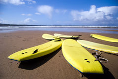 Landscape view of yellow surfboards on beach. Landscape view of yellow surfboards resting on beach with blue sky in background. Shot from a very low perspective Royalty Free Stock Photos