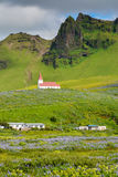 Landscape of Vik village, Iceland with Myrdal Church Royalty Free Stock Photography