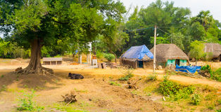 Landscape of the village houses with thatched roof Royalty Free Stock Photography