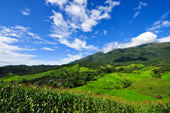 Landscape village terrace Rice fields Stock Photo