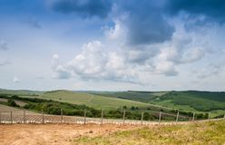 Landscape with vineyard in the hills Royalty Free Stock Image