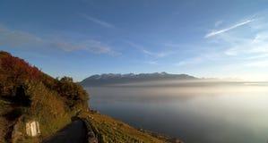 Landscape: Vineyard, lake and mountain Royalty Free Stock Image