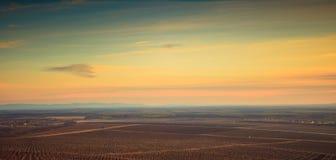 Landscape with vineyard Stock Photos