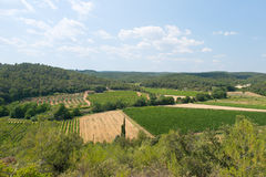 Landscape with vineyards in France Royalty Free Stock Images