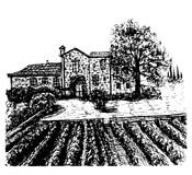 Landscape vineyards hand drawn ink sketch  illustration Stock Image