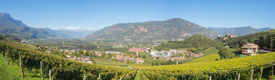 Landscape of the vineyards of the Trentino Alto Adige in Italy. The wine route. In summer time Stock Image