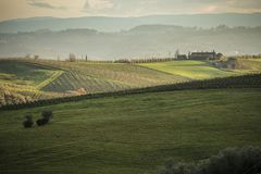 Tuscany`s vineyards and country in winter, at sunset Stock Image