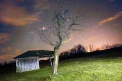 Landscape with vintage wooden shack and old tree Royalty Free Stock Photo