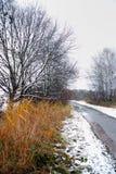 landscape vintern Arkivfoton