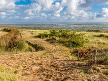 Landscape Vlieland and Waddensea, Holland Stock Photos