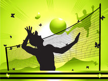 Landscape, volleyball, people Royalty Free Stock Photos
