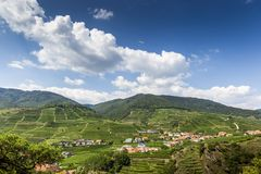 Landscape of Wachau valley and little town Spitz. Austria. Landscape of Wachau valley and little town Spitz. Lower Austria stock image