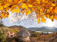 Landscape of Wachau valley, Spitz village with Danube river in Austria. Landscape of Wachau valley, famous Spitz village with Danube river in Austria Stock Images