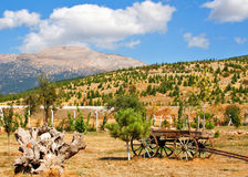 Landscape with wagon Royalty Free Stock Image