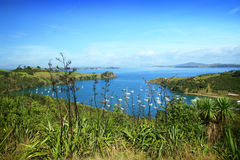 Landscape at Waiheke Royalty Free Stock Photo