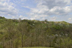 Landscape from the walls of the Bologa medieval fortress. Stock Photography