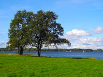 Landscape, water, boats and trees Royalty Free Stock Images