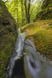 Landscape of the water cascades of a mountain stream. The river flows through mossy rocks surrounded by a beautiful forest. Stock Photography