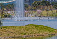 Landscape of a water fountain in middle of park lake shooting wa. Ter into the air with green trees and building in background Royalty Free Stock Images
