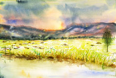 Landscape watercolor painted. Beautiful sunset on field landscape watercolor on paper Stock Photography