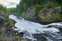 Landscape with a waterfall. Landscape with small falls on the wood river in Kareliya (Russia Stock Photos