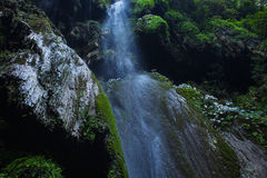 Landscape with waterfall Stock Image