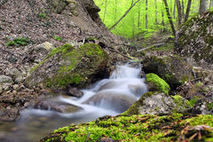 Landscape with a waterfall in forest Royalty Free Stock Photos