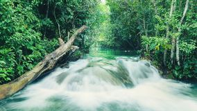 Landscape of a waterfall on Formoso river in Bonito - MS, Brazil. River with transparent green water surrounded by nature. Tourism place for aquatic adventures Stock Photos