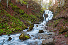 Landscape with a waterfall Shipot and forest river. Carpathians Stock Images