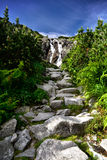Landscape of waterfall Siklawa in Tatras Royalty Free Stock Photo