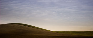 Landscape wave. Autumn field with light blue sky Royalty Free Stock Photo
