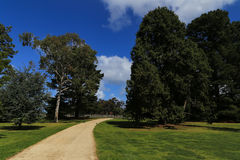 The landscape in werribee park , melbourne,australia Royalty Free Stock Images